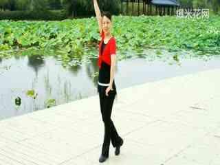 王广成广场舞教学 月亮之上自由飞翔 动作演示图片